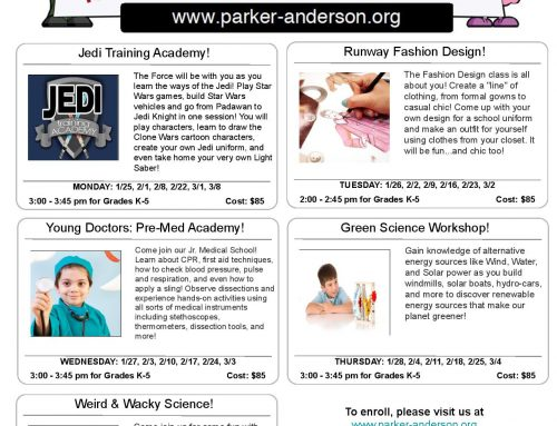 Parker Anderson Enrichment: Session 3